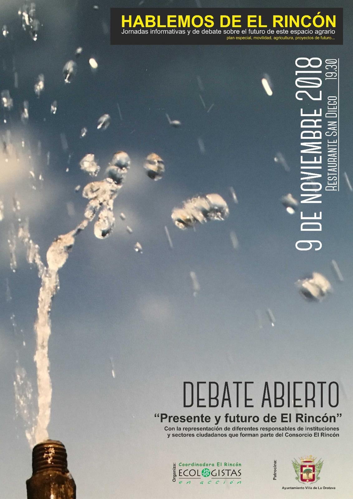 Debate abierto: PRESENTE Y FUTURO DE EL RINCÓN